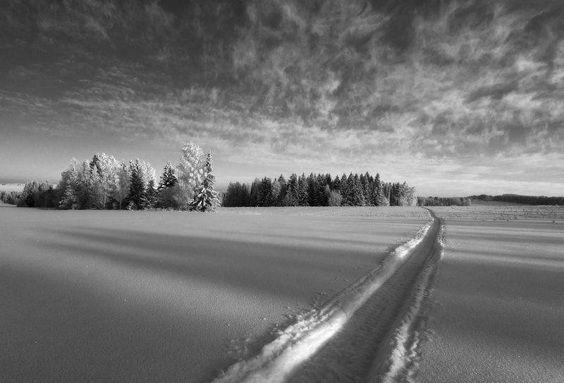 Поле колея снег лес тени облака зима мороз Небесные ангелыphoto preview