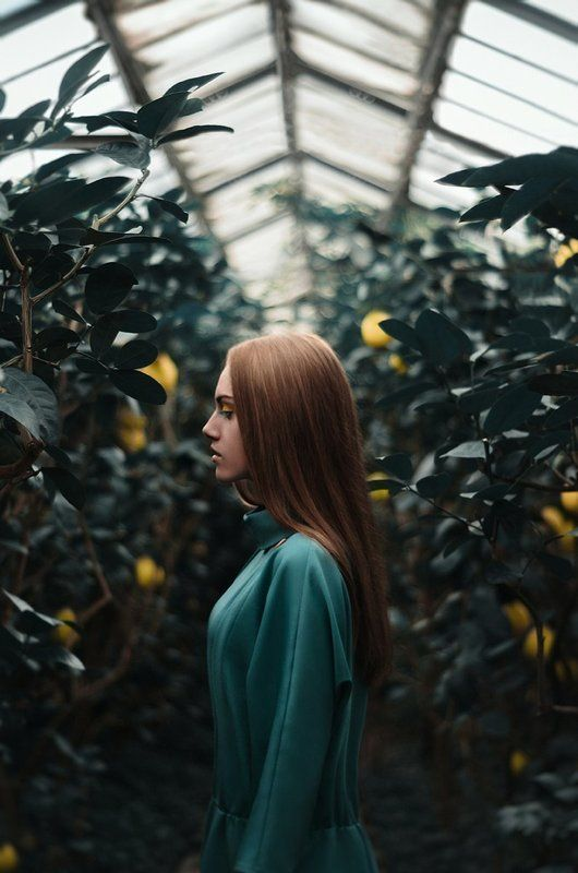 девушка, лимонарий, лимон, желтый, теплица NEW ADAM'S APPLEphoto preview