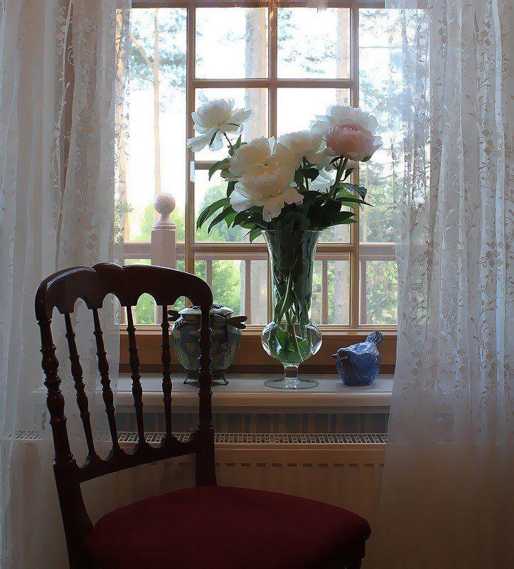 пион,стул,окно интерьерphoto preview