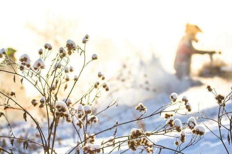 Снежный беспределphoto preview
