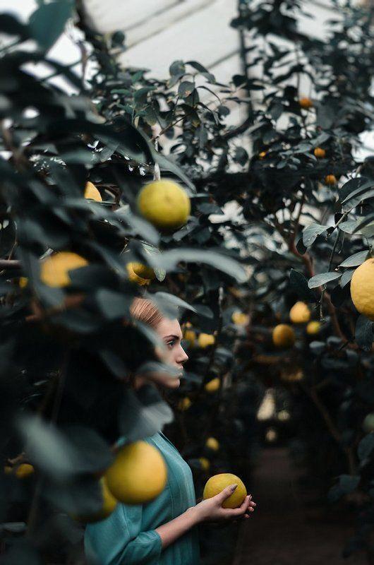 девушка, лимонарий, лимон, желтый, теплица, lemon, greenhouse, yellow, hair, long, turquoise, girl, young, model, Russia, Russian, mosina, conceptual, portrait, light, green NEW ADAM'S APPLEphoto preview
