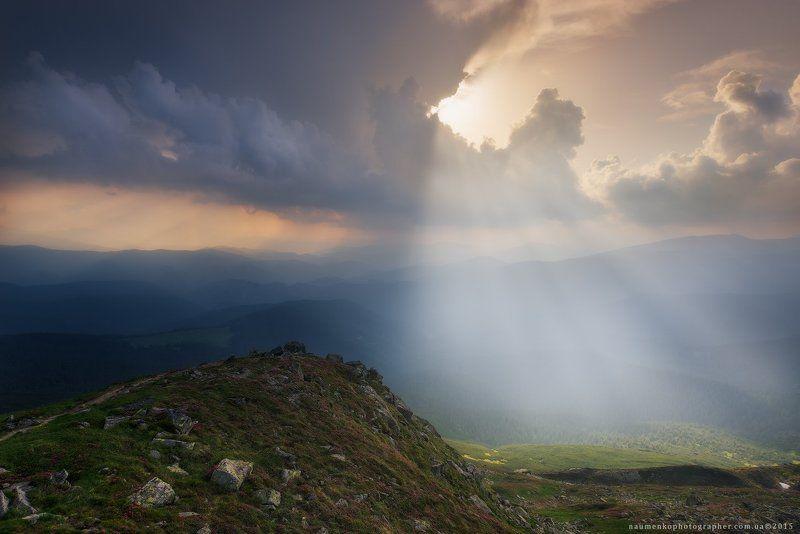 пейзаж, горы, природа, лес, небо, путешествия, красивый, лето, зеленый, украина, трава, дерево, фон, парк, естественный, луг, гора, сезон, красота, цвет, солнце, свет, свежий, карпатский, идиллический, карпаты, карпатские, синий, туризм, вид, холм, время, Карпаты. Вечерний свет у горы Поп Иванphoto preview