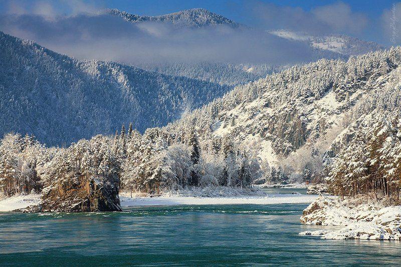 республика, алтай, горный, река, гора, горы, скала, скалы, ноябрь, 2016, тайга, сосна, сосны Катуньphoto preview