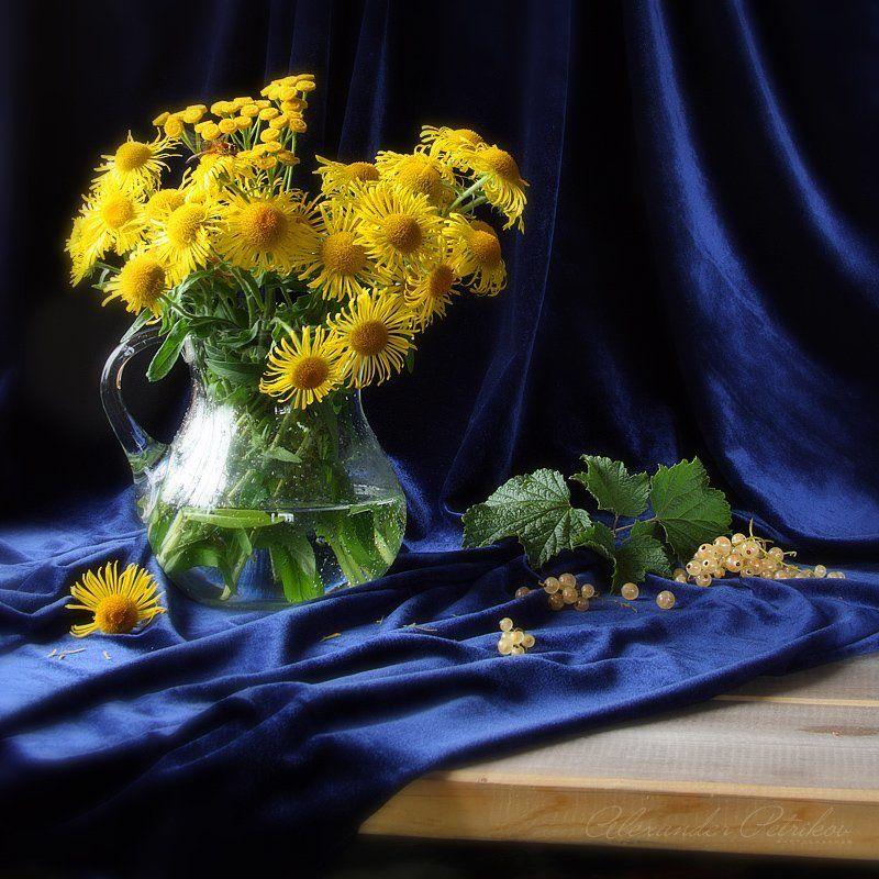 белая, смородина, бархат, желтые, цветы Белая смородинаphoto preview