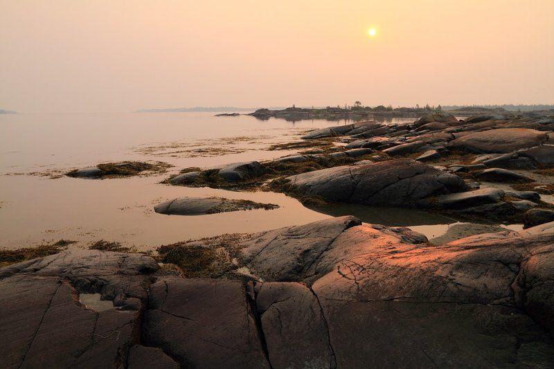 рассвет, белое, море, острова, дымка, карелия Утро в дымкеphoto preview