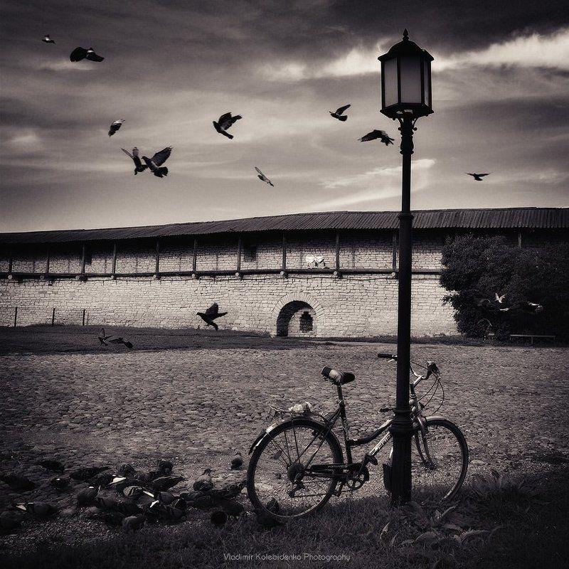 псков, крепость, велосипед, голуби ***photo preview