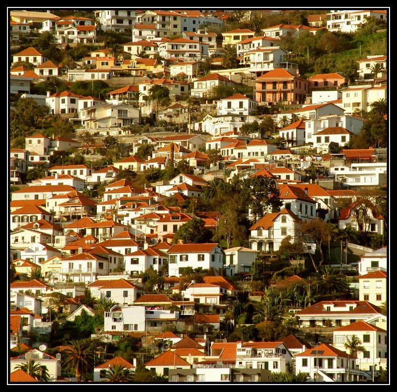 funchal,madeira,portugal город на гореphoto preview