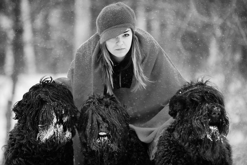 Black Russian Terriers The Lady of the Russian Terriersphoto preview