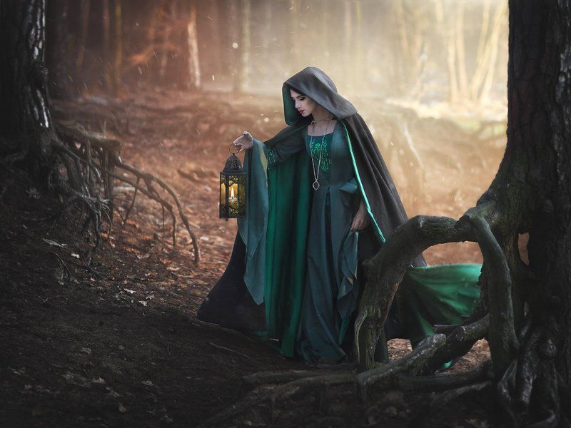 dark  twilight fairytale medieval stylization Twilightphoto preview