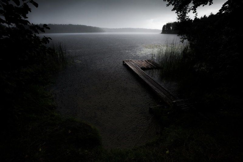 обновление, ливень, лето, озеро, лес, волобо, беларусь, россия Обновлениеphoto preview
