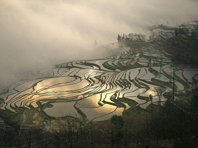 yuanyang hani terrace - china photo preview