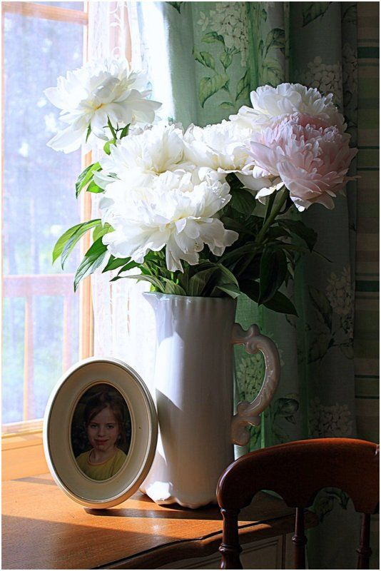 пионы,утро пионы-2photo preview