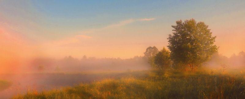 неман,утро, туман, солнце Туманы Неманаphoto preview