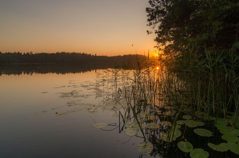 закат беларусь озеро солнце золото отражение лес вода зеркало На закате дняphoto preview