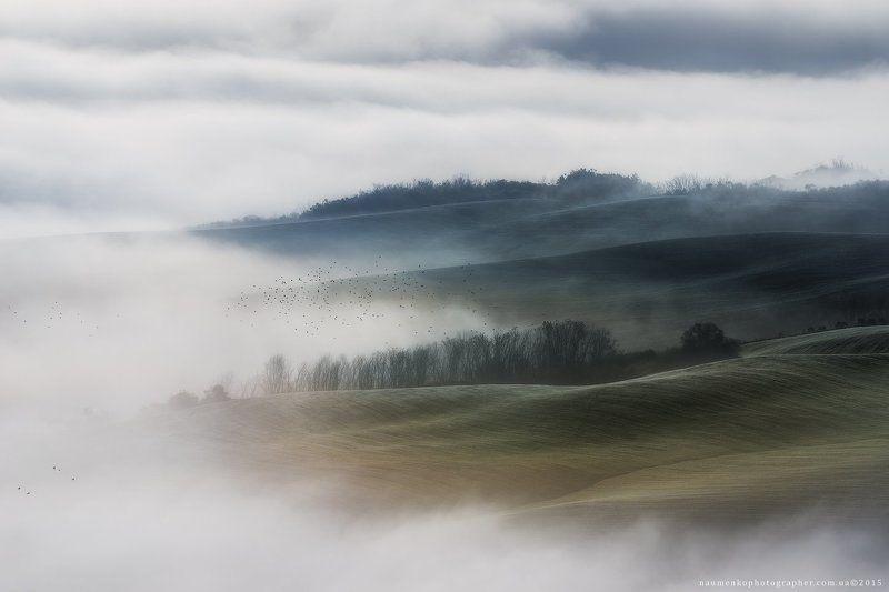 европа, италия, тоскана, тосканский, орча, пейзаж, панорама, туман, красота, страна, кипарис, рассвет, ферма, дом, поле, сад, холм, холмы, дом, итальянский, легкий, утро, загадочный, природа, дорога, провинция, декорации, живописный, восход, дерево, долин Италия. Тоскана. Туман на полях долины Val d'Orciaphoto preview
