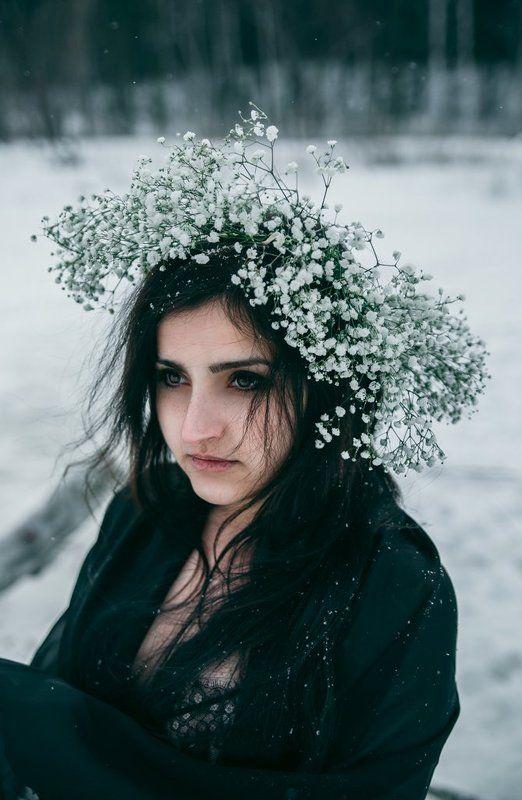 портрет цветы гипсофилы снег Гипсофилыphoto preview