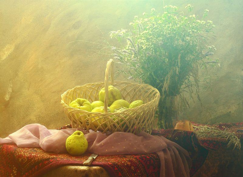 айва, фрукты, поднос, урожай,цветы, полевые,шарф, Натюрморт с айвойphoto preview