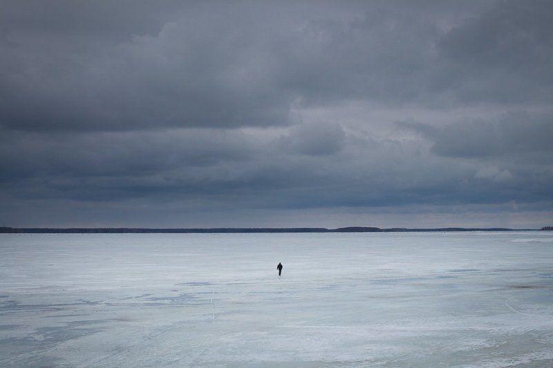 пейзаж, зима, снег, непогода, лед, дубна Одинphoto preview
