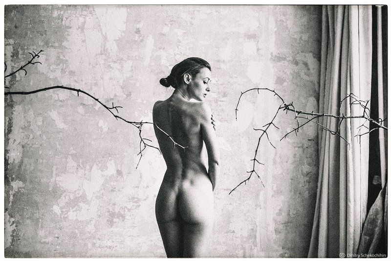 art nude bw  * * *photo preview