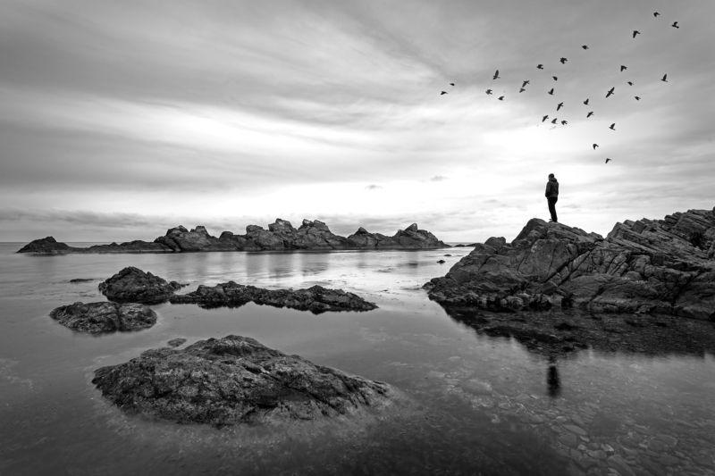 rocks, sea, birds, mood, man, lonley Loneliness photo preview