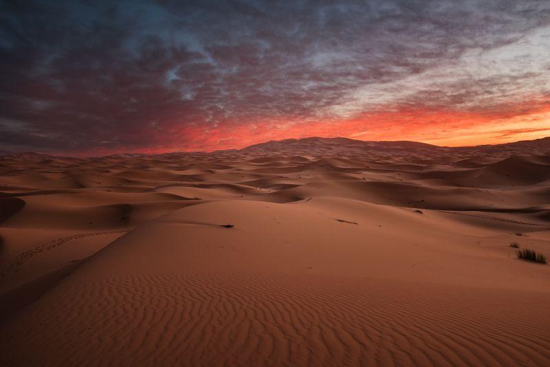 Сахара, Мерзуга, пустыня Сахараphoto preview