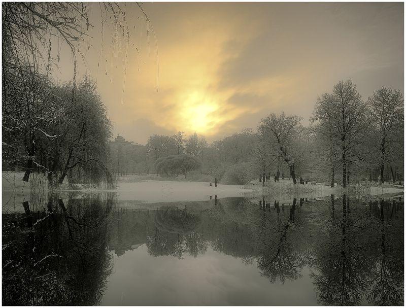 Пейзаж. Городской пруд.photo preview