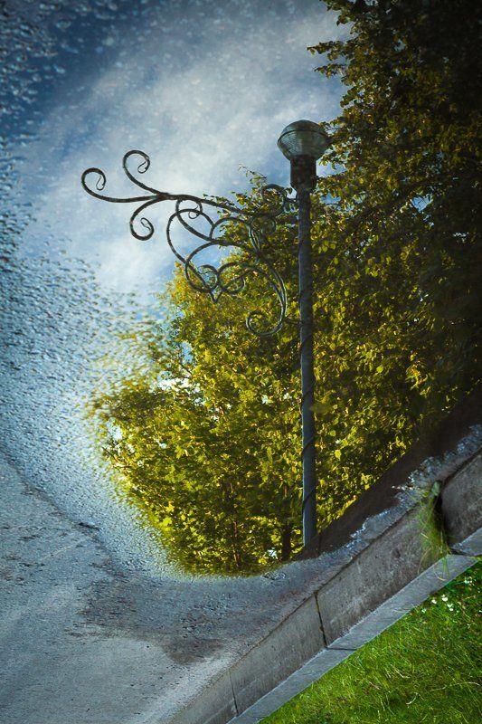 отражение, sigma, dp1 Отраженияphoto preview