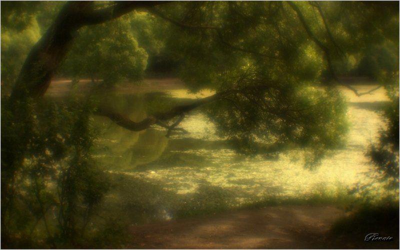 Пространство монокляphoto preview