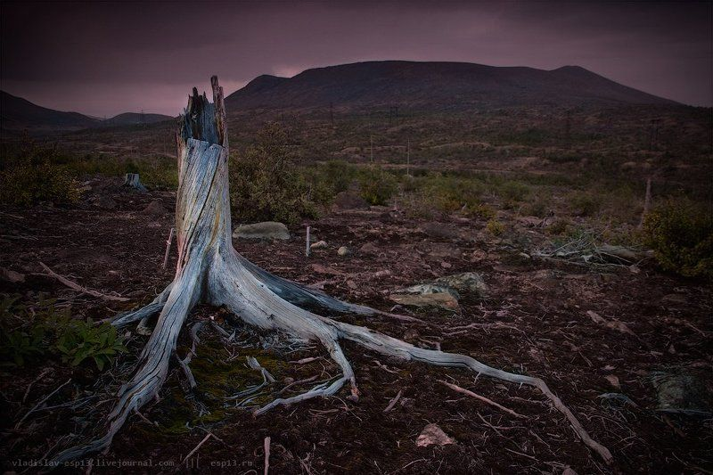 мончегорск , техноген Выжжена земляphoto preview