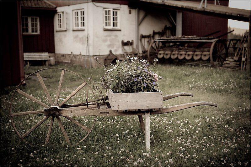 Фермерский дворикphoto preview