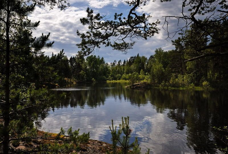 ладожское озеро, карелия *  *photo preview