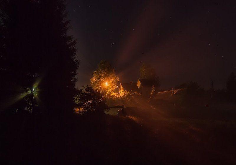Под покровом ночи...photo preview
