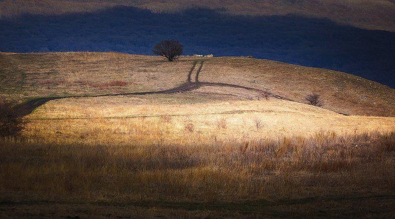 весна,ставрополье,март,пейзаж,ландшафт,ручьи,небо,облака,лучи солнца,дорога,одинокое дерево Бурая весна Ставрополья. Фотоэтюды 17 марта 2017.photo preview