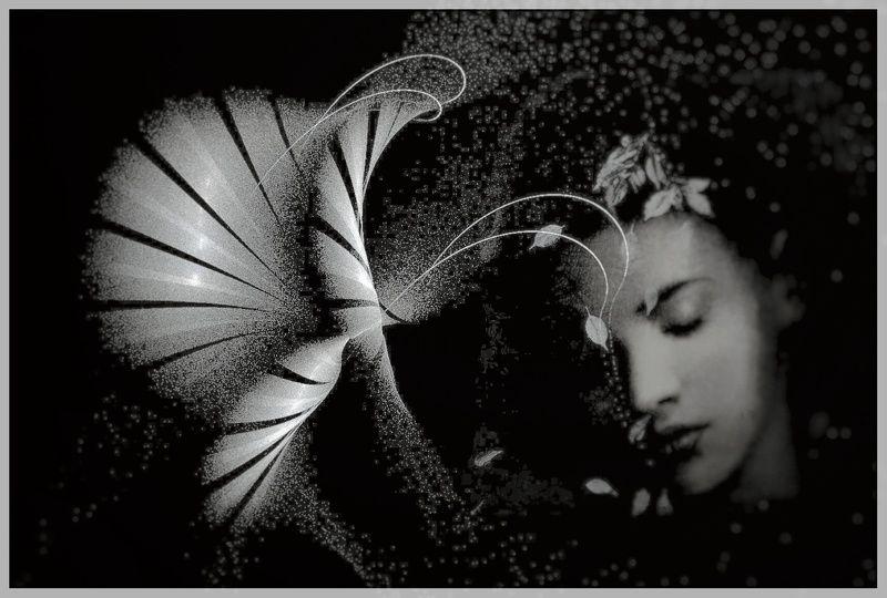 Black&White Сон.photo preview