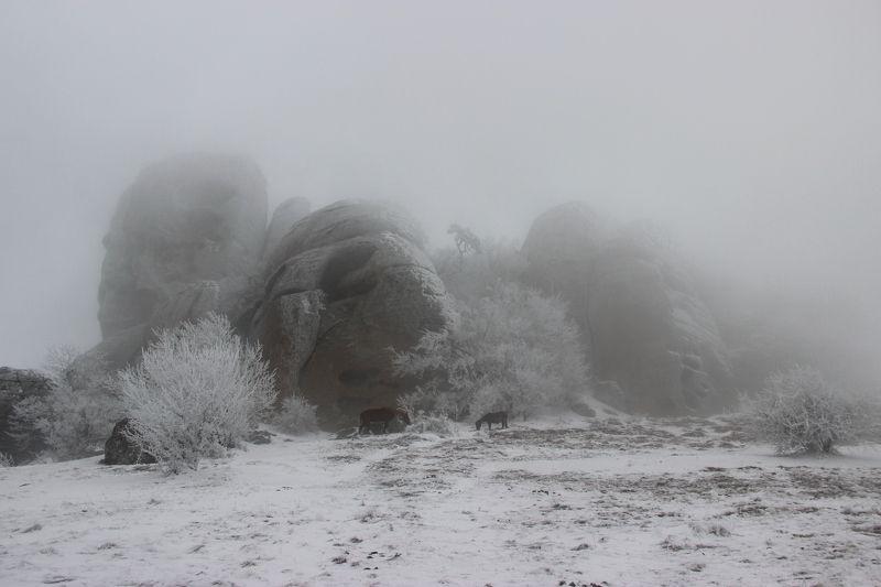 Зима на Демерджиphoto preview