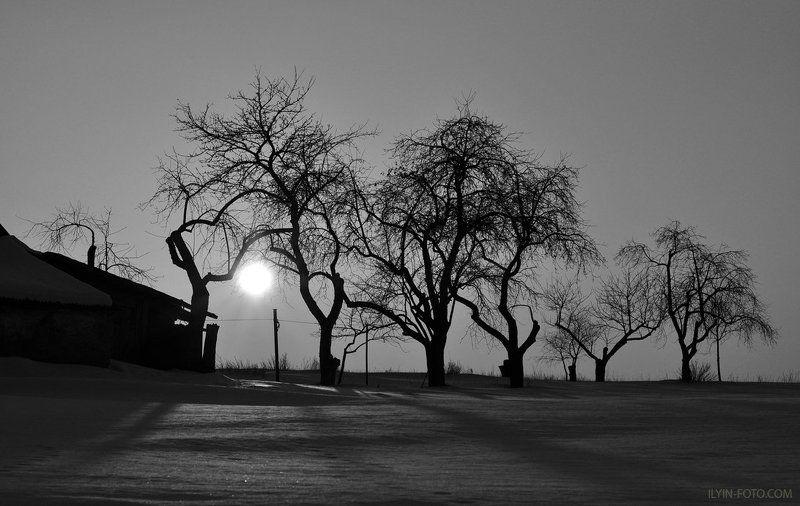 хутор,деревня,чернобелое,сад,зима,farm,village,black and white,garden,winter Хуторокphoto preview