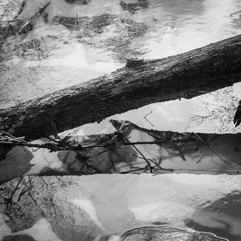 фото, отражение, весна, чб, вода, линии Rusaliphoto preview