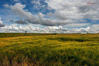 По дороге с облаками среди полей Подмосковья.