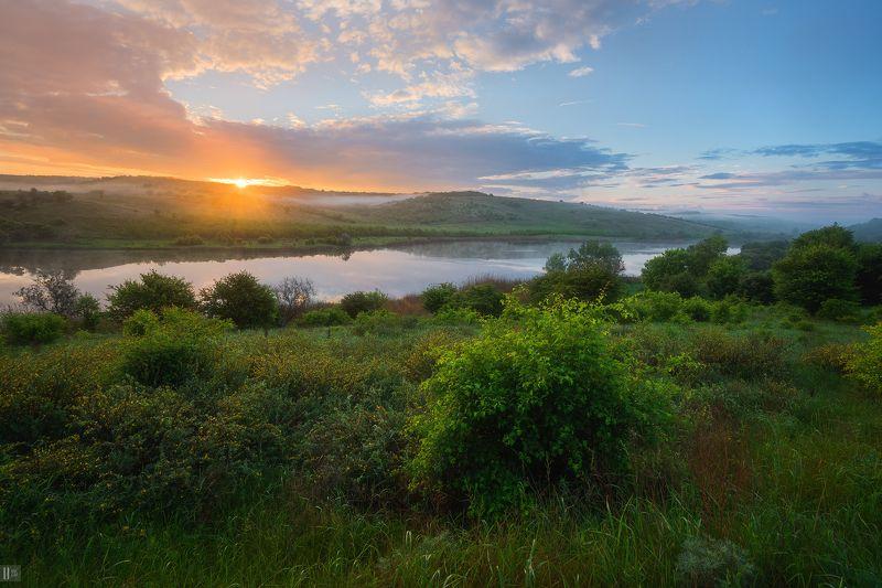 рассвет,озеро,туман,кусты,трава,деревья,холмы,тучи, Источая туманыphoto preview