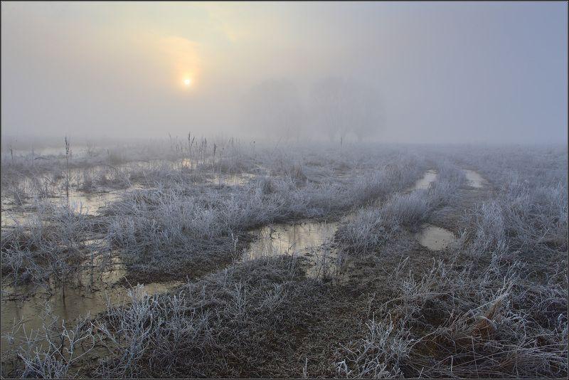 туман, солнце, дорога, вода Половодье на р.Удыphoto preview