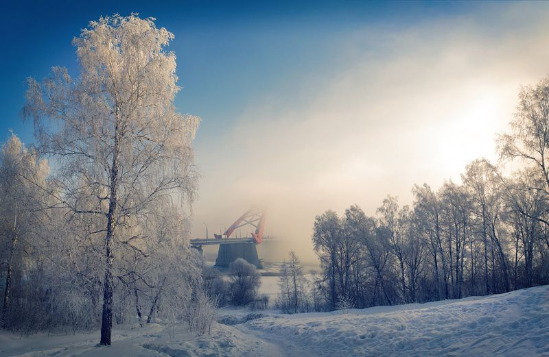 снег, туман, мост, деревья, Зима не отпускаетphoto preview