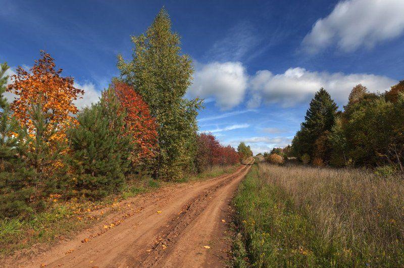 дорога трава лес осень краски облака небо Краски осенней дороги.photo preview