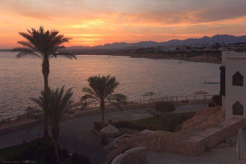 египет, Шармальшейх, пальмы, море, вечер, закат, берег, отель Египетский закатphoto preview