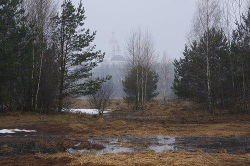 Одним очень туманным весенним утром в Подмосковье
