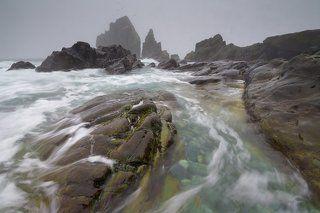 Живое море Охотское