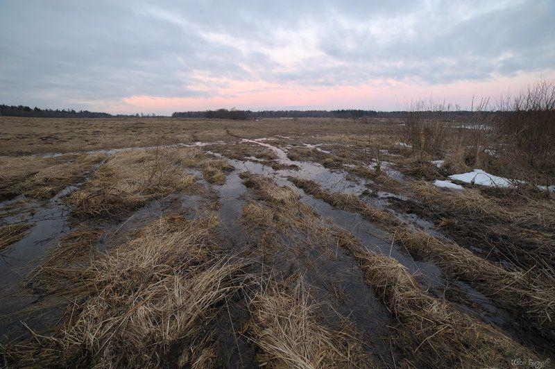 поле, весна, лужа, закат Полеphoto preview