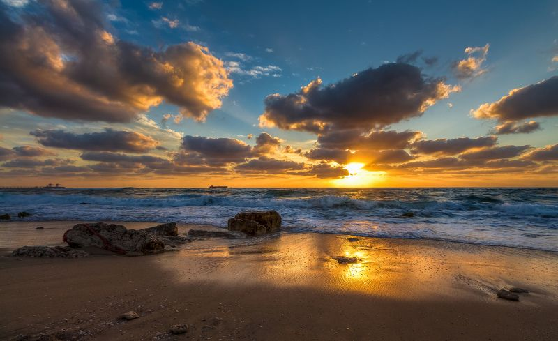 Золотой песок у моряphoto preview