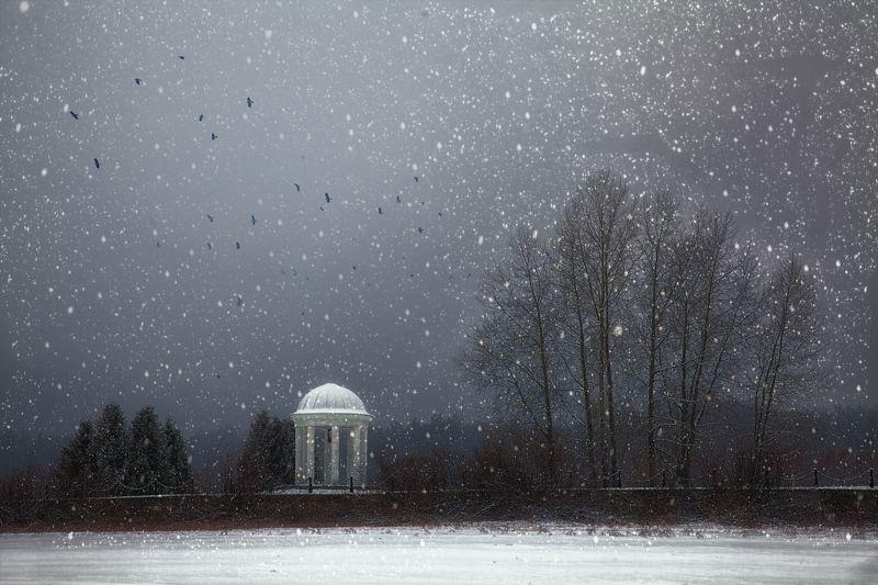 вспоминая зиму..photo preview