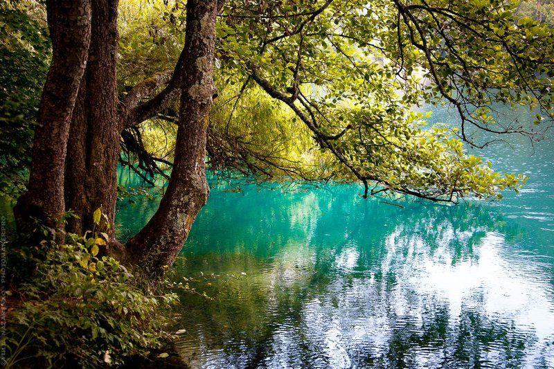 Кабардино-Балкария, Голубое озеро, Голубые озера, пейзаж, озеро, голубой, голубое, вода, голубая Голубое озеро / Blue lakephoto preview