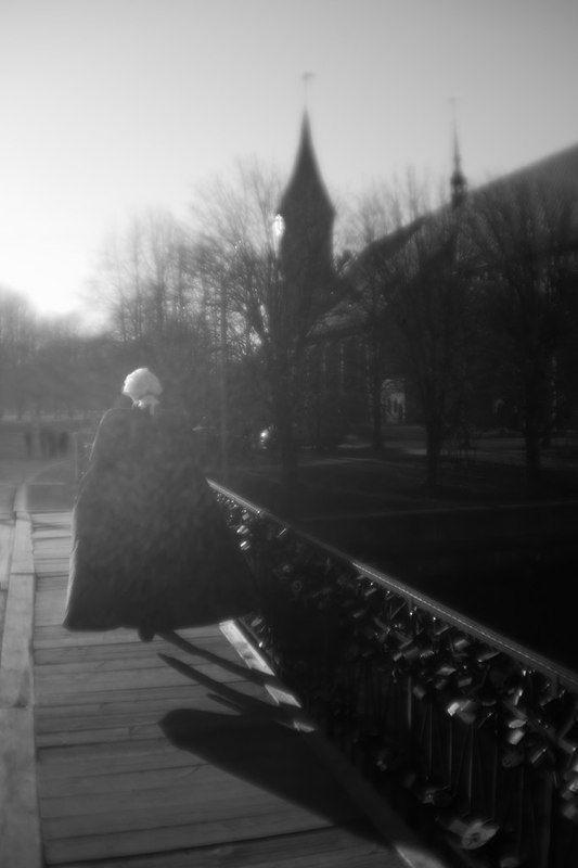 калининград, остров канта ***photo preview